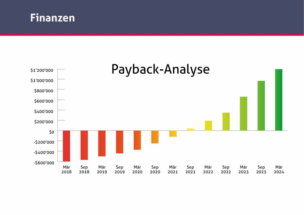 Payback-Analyze